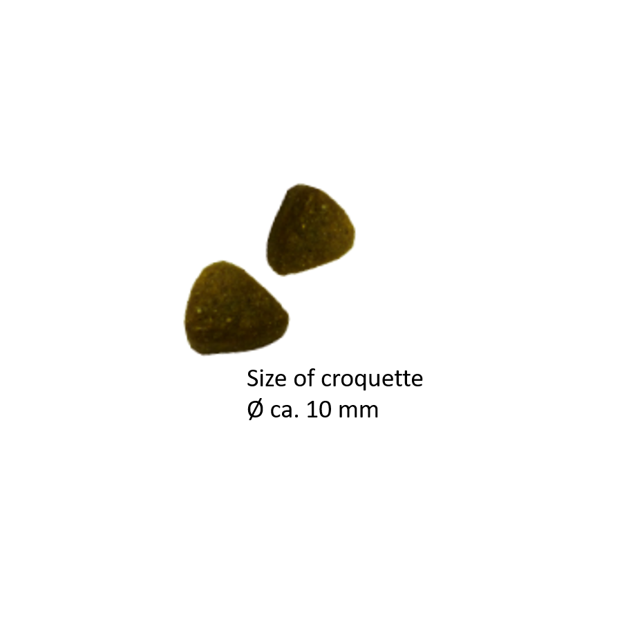 Naturediet Salmon & Rice 1x390g