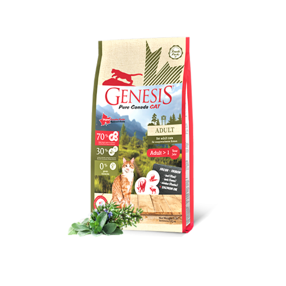 Naturediet Salmon Grain Free 1x390g